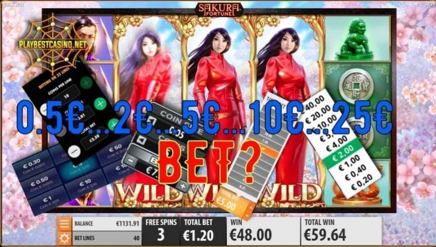 Bet in the casino and various types are presented in this picture.